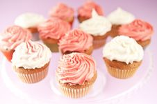 Free Cupcakes Royalty Free Stock Images - 26210559
