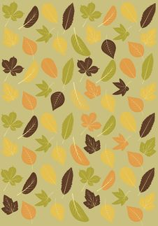 Autumn Leaves Background. Stock Images