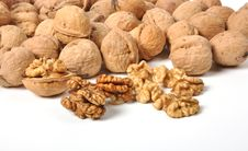 Free Walnuts Stock Images - 26213654