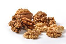 Free Walnuts Royalty Free Stock Photo - 26213695