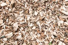 Closeup Of A Pile With Woodchips Royalty Free Stock Images