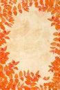 Free Orange Autumnal Leaves Background Royalty Free Stock Images - 26238599