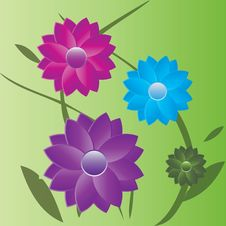 Summer Flowers With Leaves I Royalty Free Stock Images