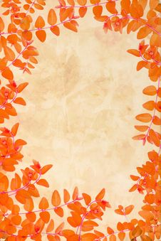 Free Orange Autumnal Leaves Background Royalty Free Stock Images - 26238599