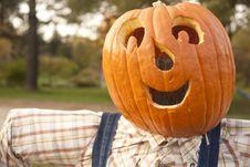 Free Halloween Pumpkim Royalty Free Stock Image - 26240266