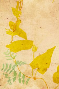 Free Beautiful Vintage Background With Autumnal Leaves Stock Photo - 26240820