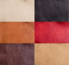 Free Collection Of Colorful Leather Royalty Free Stock Photography - 26248527