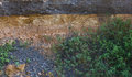 Free Grass Growing Close To The Soil Under The Road. Stock Photography - 26252602