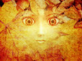 Free Face In Autumn Leaves Royalty Free Stock Images - 26254549