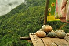 Free Pumpkin  In Hill Tribe S House Balcony Royalty Free Stock Images - 26250189