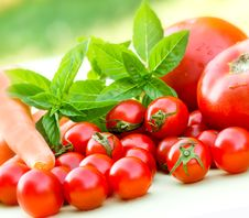 Free Cherry Tomatoes And Tomatoes Royalty Free Stock Photography - 26252447