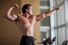 Free Bodybuilder Pose Royalty Free Stock Photography - 26263087