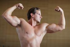 Free Bodybuilder Pose Royalty Free Stock Photography - 26263097
