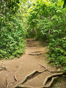 Free Pathway Stock Photo - 26266900