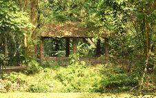 Free Jungle Hut Royalty Free Stock Photos - 26268368