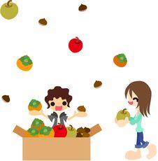 Free Autumn Fruits Stock Images - 26279684