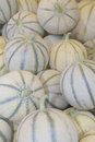 Free Cantaloupe Melons At The Market Royalty Free Stock Image - 26289876