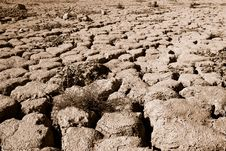 Free Drought Royalty Free Stock Image - 26282126