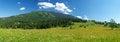 Free Mountain Meadow Royalty Free Stock Photo - 26291275