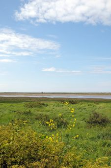 Free Marshes At Blakeney Stock Image - 26294991