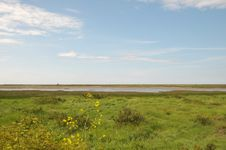 Free Marshes At Blakeney Royalty Free Stock Images - 26295019