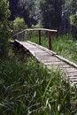 Free Woods Bridge Royalty Free Stock Images - 2630149