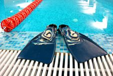 Free Flippers With Swimming Path Stock Images - 2632584