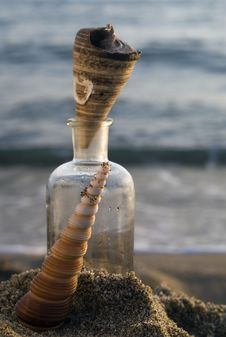 Free Shells And A Bottle Stock Image - 2635231
