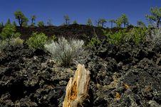 Free Volcanic Lava Field Royalty Free Stock Image - 2638076