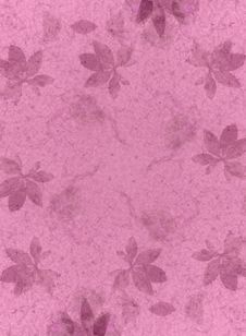 Pink Flower Texture Background Royalty Free Stock Photography