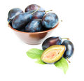 Free Plums Stock Image - 26306501