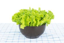 Free Fresh Salad Stock Images - 26304724