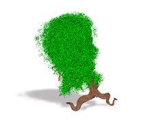 Free Abstract Fantasy Running Tree Stock Photo - 26305380