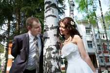 Happy Bride And Groom Near Birch Stock Photo