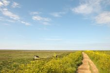 Free Marshes At Blakeney Stock Images - 26305924