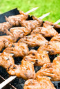 Free Grilled Chicken Wings Royalty Free Stock Photography - 26311967