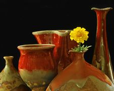 Free Pottery & Marigold Stock Photo - 26332490
