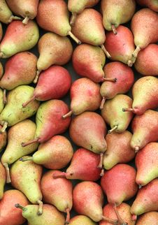 Free Some Delicious Juicy Pears Royalty Free Stock Photo - 26345415