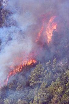 Free Bush Fire Stock Photo - 26347640