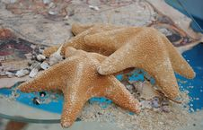 Free Starfishes On A Glass And Treasure Map Royalty Free Stock Images - 26347899