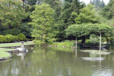Free Picturesque Japanese Garden With Pond Royalty Free Stock Photos - 26348978