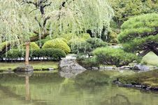 Free Picturesque Japanese Garden With Pond Stock Image - 26349081