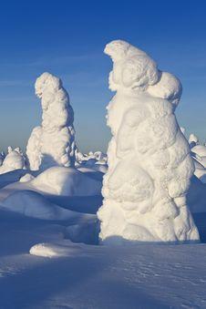 Free Sunny Winter Day Stock Photos - 26354873