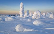 Free Sunny Winter Day Royalty Free Stock Photos - 26362998