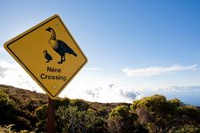 Free Nene Crossing Sign. Stock Images - 26365464