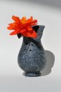 Free Vase With Flower Stock Photography - 26370092