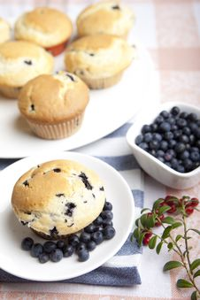 Free Blueberry Muffins Stock Photos - 26378783