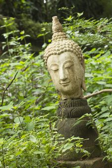 Free Stone Buddha Head Stock Photography - 26379092