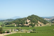 Free View Of Napa Wine District Stock Photo - 2641420