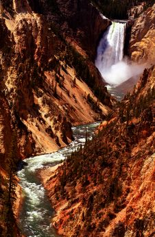 Free Grand Canyon Of  Yellowstone 3 Royalty Free Stock Photos - 2642968
